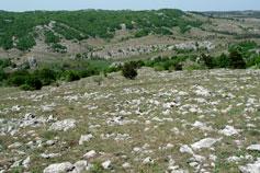Горный ландшафт Ай-Петри