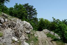 Горная тропа на Ай-Петри