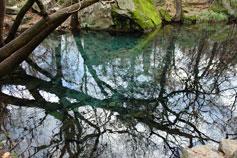 Зима в Алупке, пруды