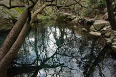 Алупка, зеркальный пейзаж