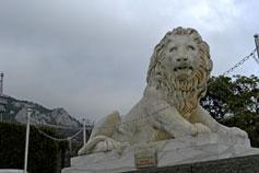 Алупка, лев