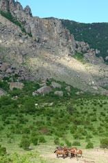 Южная Демерджи, долина Привидений
