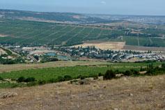 Балаклава долина  Золотая Балка