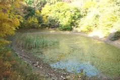 Кикенеизское озеро Биюк-Исар