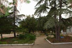 Санаторий Прибой в Евпатории. Парк