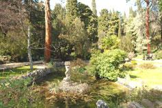 Один из красивейших парков Крыма. Парк Фороса