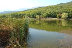 Крым, Краснокаменка, лесное озеро