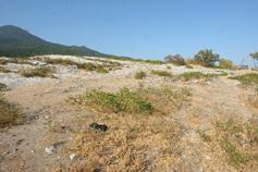 Крым, Краснокаменка, плато Красного камня