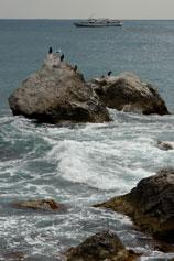 Морская пена Береговое