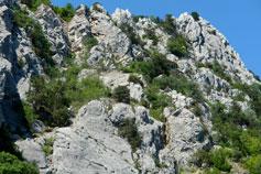 Ласпи, гора Кокия-Бель