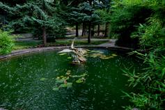 Санаторий Дюльбер в Мисхоре. Парк, фонтан Пеликан