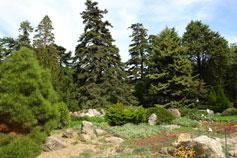 Парк Никитский Ботанический