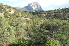 Гора Сокол. Вид со стороны горы Караул-Оба