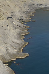 Берег Синей бухты в Новом Свете