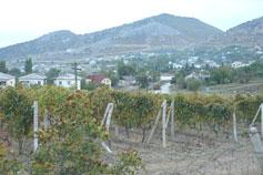 Крым. Село Веселое