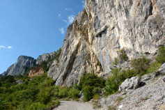 Дорога в горах Крыма