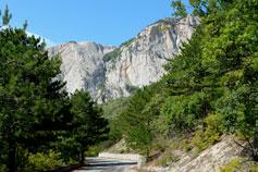 Олива, горная трасса
