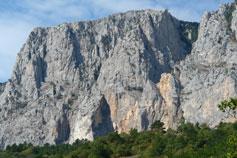 Лес у подножья гор Крыма
