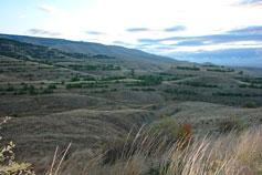 Холмы близ поселка Орджоникидзе