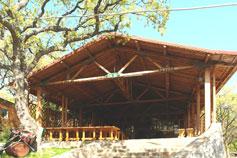Понизовка, Артемида бар