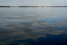 Фото Сакского грязевого озера