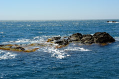 Морская сказка