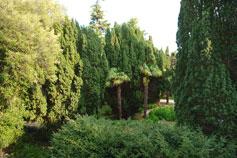 Симеиз, парк Нижний