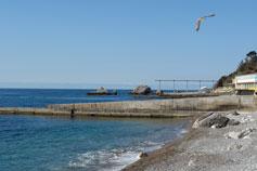 Симеиз, пляж, чайка над морем