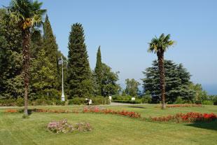 парк в ливадии